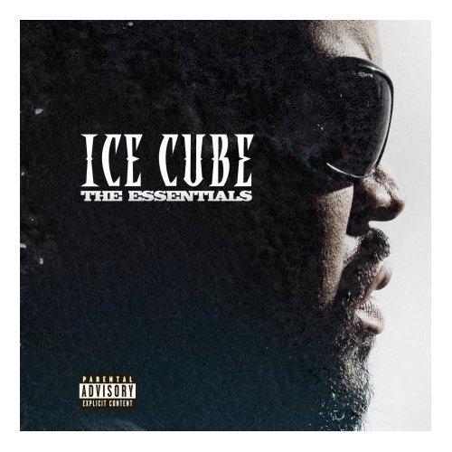 icecubetheessentials1.jpg
